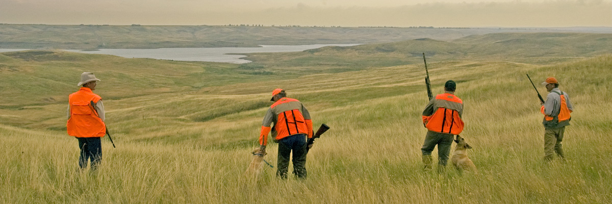 Pheasant hunting season runs mid-October until the end of December.